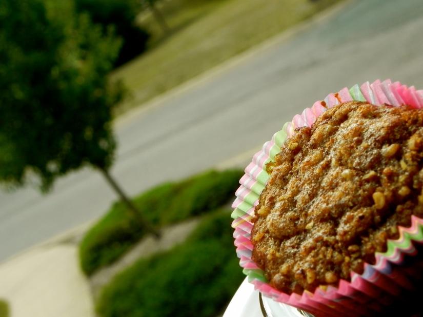 Cran-Oat Muffins | thepajamachef.com