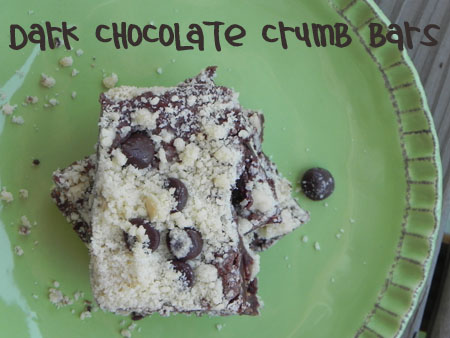 dark chocolate crumb bars image on plate