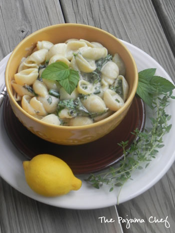 Creamy Shells and Yogurt | thepajamachef.com