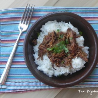 Crockpot Asian Pulled Chicken