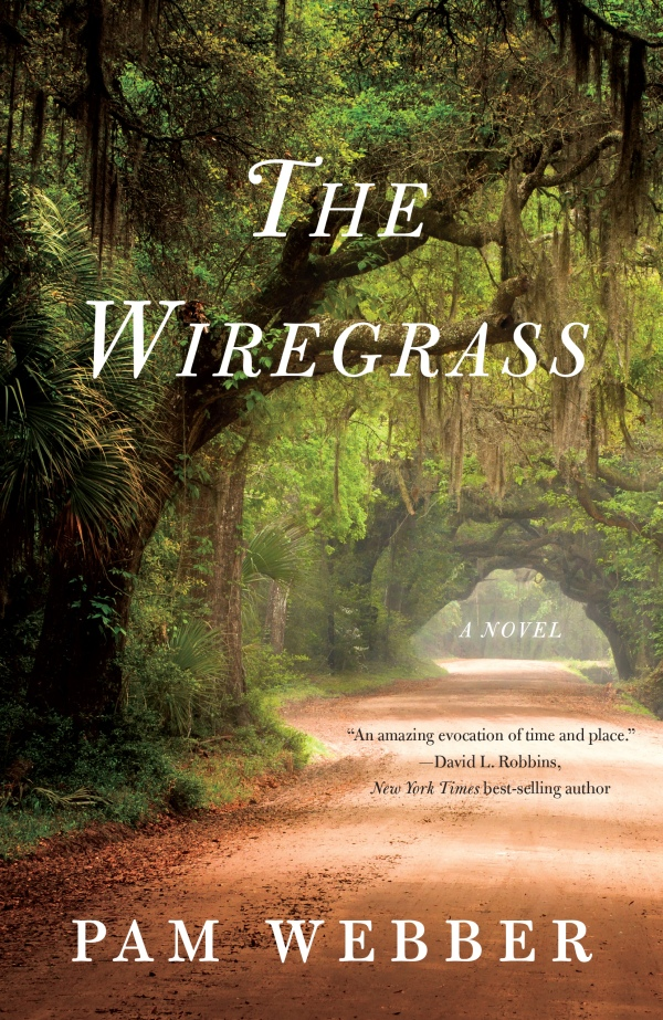 The Wiregrass - a book review on thepajamachef.com #reading #southern #summer #beachreads