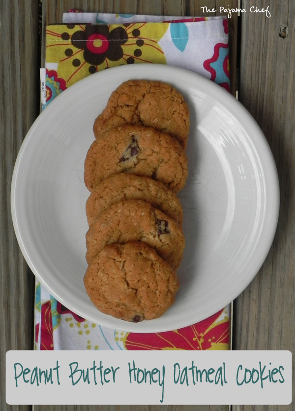 """Delightful little chocolate-studded oatmeal cookies filled with lots of peanut butter and honey flavor. Everyone will sneak open the cookie jar for """"just one more"""" over and over again!"""